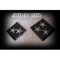 Charola Cóncava Marmol Negro Con Brillo, 2 Estrellas De Mar