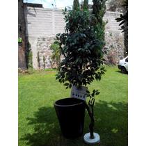 Arbol Artificial Ficus