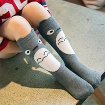 Calceta Infantil Niñ@ Totoro Gato Búho Oso Cute Kawaii Media