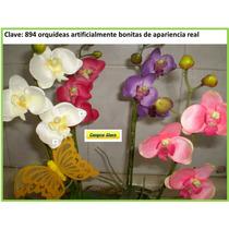 Maceta Con Flores De Orquideas Mdn
