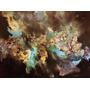 Pintuta Abstracta Cuadro Decorativo Jessica Kinich