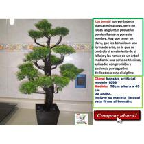 Bambú, Ficus Y Palmas Artificiales Daa