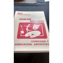 Expresión Y Apreciación Artísticas - Telesecundaria