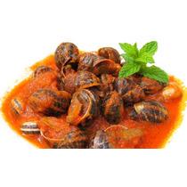 Caracol Vivo Comestible Platillo Surtimios Restaurantes