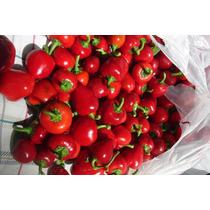 20 Semillas Chile Red Cherry Cerezo Picante Huerto Jardin