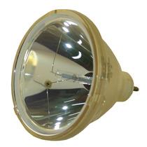 Lámpara Philips Para Sanyo Plc-xp10 / Plcxp10 Proyector