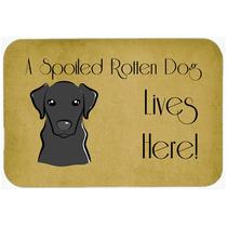 Labrador Negro Perro Estropeado Vive Aquí Cocina O El Baño