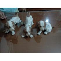 Figuras De 3 Perros Cocker Spaniel. Artesanías De Cuernavaca