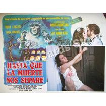Lobby Cards,carteles,luz Maria Jerez. Terror