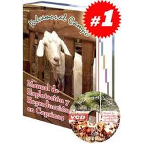 Manual De Explotación Reproducción En Caprinos Envio Gratis