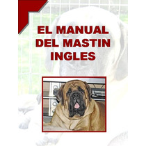 Manual Del Mastin Ingles O Mastiff + Regalos Conocelo ¡¡ Vmj