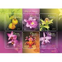 2010 Orquideas Flora De México Hoja Souvenir 6/sellos