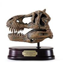 Dinosaurio Craneo Tiranosaurio Rex Escala 1/10 Hm4