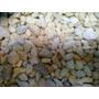 Piedras (gravilla ) Para Peceras  5k  A Solo  $35