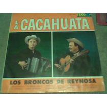 L.p.los Broncos De Reynosa