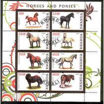 Caballos Y Ponies 8 Estampillas Au1
