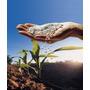 Fertilizantes De Uso Agricola Campo Invernadero Solubles