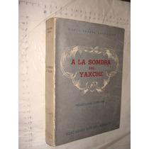 Libro A La Sombra Del Yaxche , Maria Teresa Santoscoy , Año