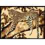 Tapete Minimalista African Adventure Leopard On Tree-3