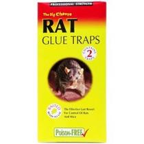 Rata Ratón Asesino - Control De Plagas - Pegamento Trampas