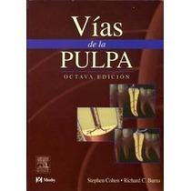 Vías De La Pulpa - Odontología - Ortodoncia - Endodoncia