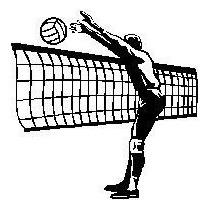 Red De Voleibol Sencilla