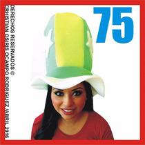 75 Sombreros Espuma Peluca Boda Fiesta Lentes Dj Gorros Xv