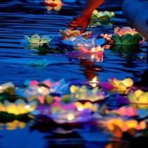 10 Flor De Loto Flotante + Vela