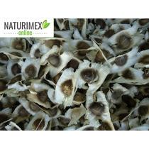 Moringaoleifera 100 (semillas)
