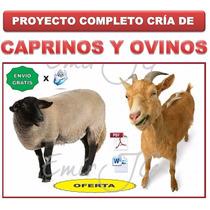 Proyecto Cria & Produccion Cabras Caprino & Ovejas Ovino