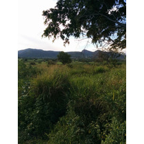 Terreno En Diego Ruiz, Carretera Yautepec Ticuman