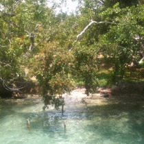 Estrene Para Semana Santa Lindo Terreno En Laguna De Bacalar