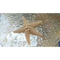 Estrellas, Caracoles, Árboles, Y Seres Mágicos De La Suerte