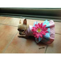 Ropa Para Mascotas,,hermoso Vestido Lily,tu Perrito Lucira!
