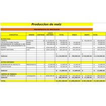 Corrida Financiera Para Proyecto De Producción De Maiz