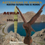 Aguila De Palo Fierro