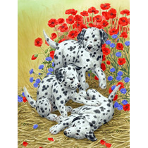 Los Cachorros Dálmata Tamaño De La Bandera Jardín Asa2071gf