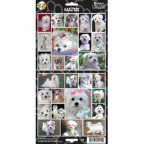 Etiquetas Engomadas Del Perro - Maltés Stickersx 27 Amantes