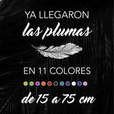 Plumas De Avestruz Drab De 25 A 34 Cm, En 11 Colores.