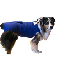 Pañal Para Perro Surgi Snuggly Perro Pañal Desechable Guard