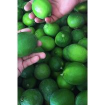Caja Organica De Limon Persa Organico Recien Cosechado