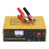 Cargador De Pulso Inteligente 6v / 12v 80ah Automático