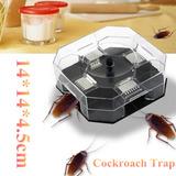 Cucaracha Grande Lagarto Insecto Trampa Asesino Eco Non Tóxi