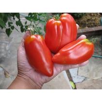 20 Semillas Jitomate Tomate Italian San Marzano Huerto