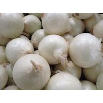 25 Semillas De Cebolla Blanca