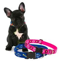 Collar Para Perro Mediano 35cm Lupine