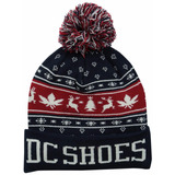 Gorro DC Shoes