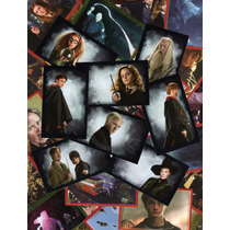 Album Estampas Panini Harry Potter Caliz Fenix Principe