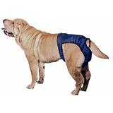 Snuggease Lavable Perro Pañal Para Perro Mediano