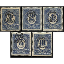 1065 Revolución Multa Habilitados G P M 5 S Mint L H 1916